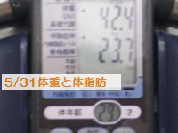 5・31体重.JPG